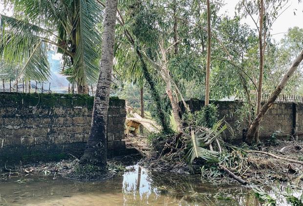 Trường học ở Bình Định tan hoang sau bão số 9, giáo viên vất vả dọn dẹp để chuẩn bị đón học sinh trở lại - Ảnh 12.