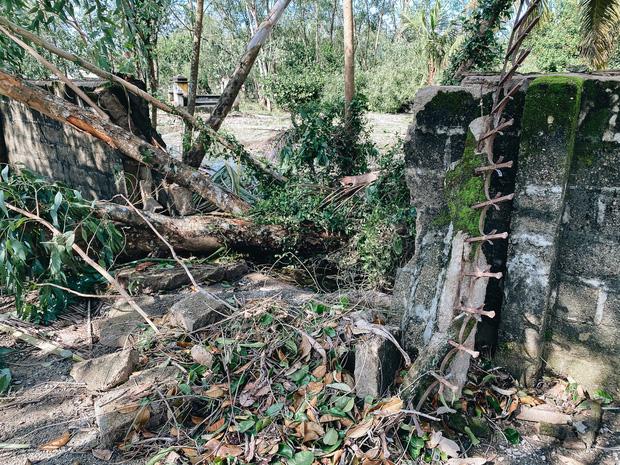 Trường học ở Bình Định tan hoang sau bão số 9, giáo viên vất vả dọn dẹp để chuẩn bị đón học sinh trở lại - Ảnh 13.