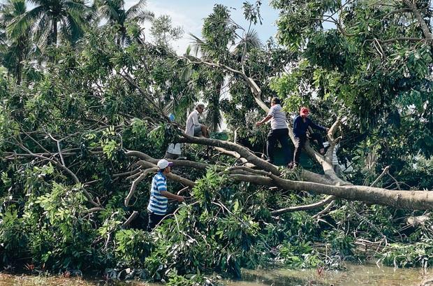 Trường học ở Bình Định tan hoang sau bão số 9, giáo viên vất vả dọn dẹp để chuẩn bị đón học sinh trở lại - Ảnh 8.