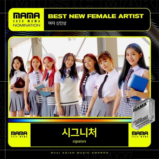 MAMA 2020 công bố đề cử: BTS và BLACKPINK nổi bật trong các hạng mục, hứa hẹn những cuộc chiến vote căng đét - Ảnh 15.