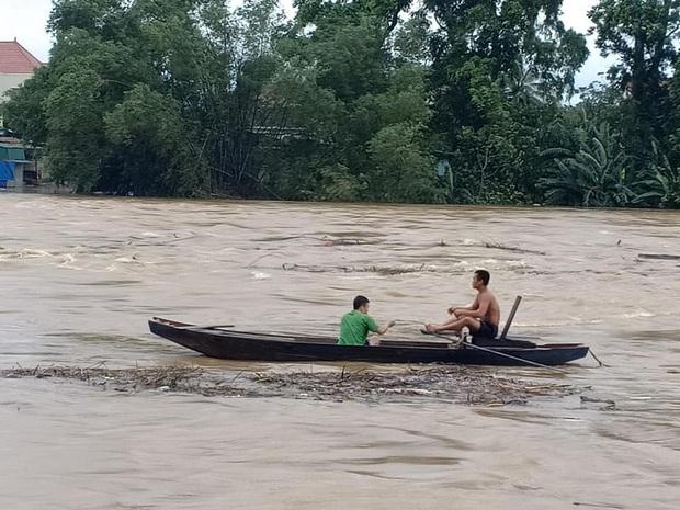 Người dân Hà Tĩnh liều mình vớt củi bất chấp nước sông dâng cao - Ảnh 2.
