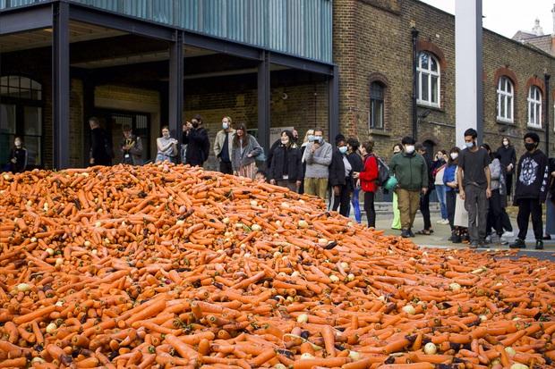 Đang yên đang lành đổ 28 tấn cà rốt ra đường, thanh niên khiến đám đông há hốc, khi biết hàm ý sâu xa vẫn không thể hiểu nổi - Ảnh 3.