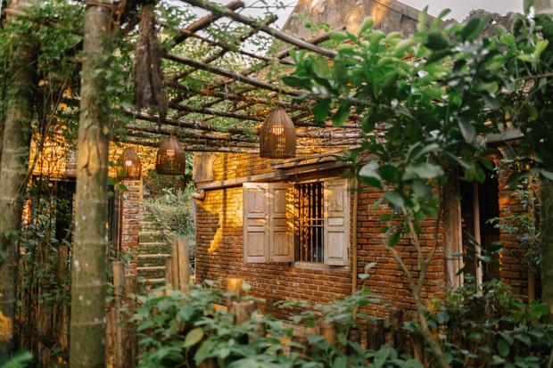 Rời thành phố lên núi trùng tu ngôi nhà bỏ hoang 5 năm trong 6 tháng,  - Ảnh 9.