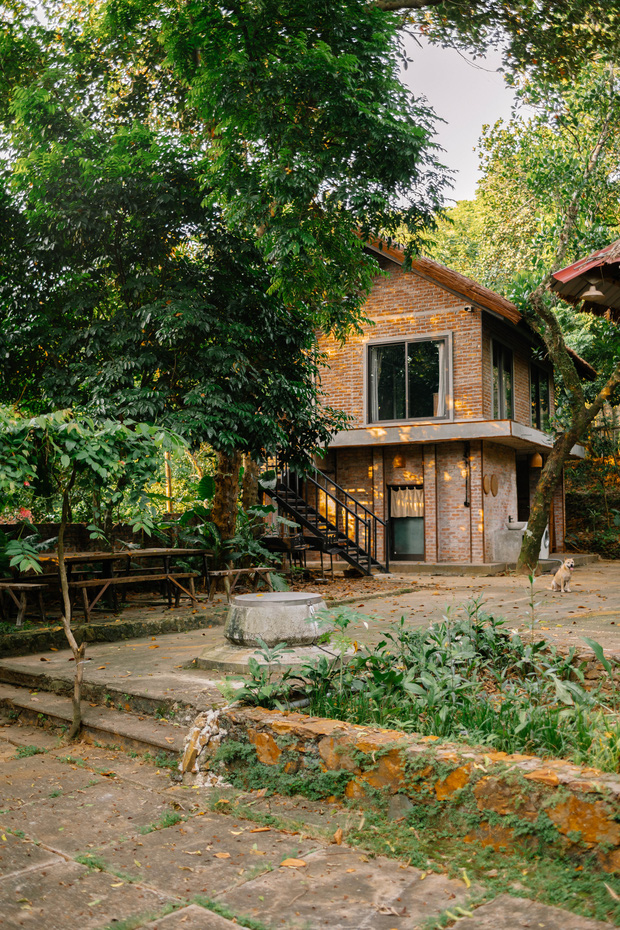 Rời thành phố lên núi trùng tu ngôi nhà bỏ hoang 5 năm trong 6 tháng,  - Ảnh 4.