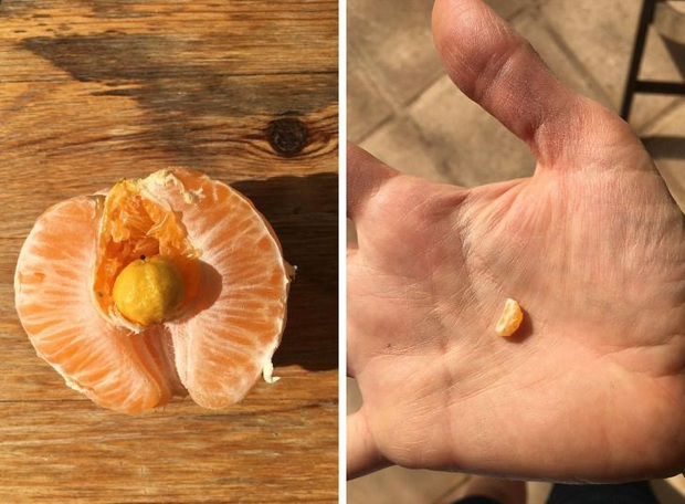 """Những lần dân mạng vỡ oà khi phát hiện thứ kỳ lạ xuất hiện trong đồ ăn, bàn tay """"mẹ thiên nhiên"""" quả là thần thánh! - Ảnh 19."""