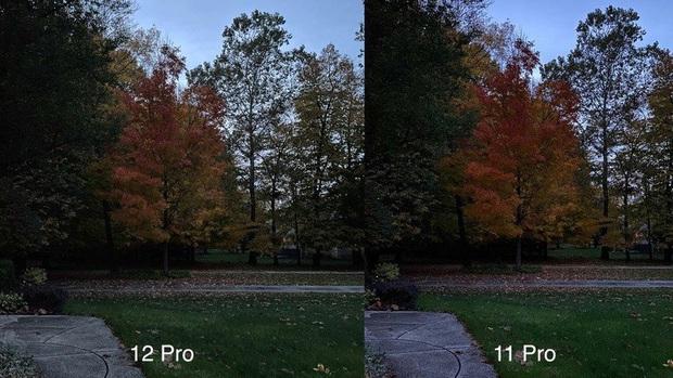 So sánh camera iPhone 11 Pro và iPhone 12 Pro - Ảnh 13.
