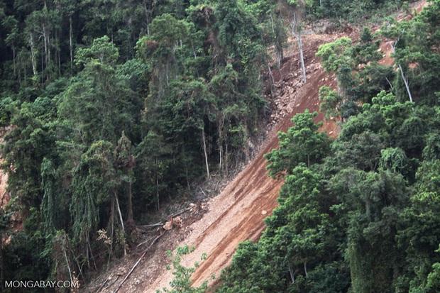 Sự thật đằng sau các vụ sạt lở đất: Thảm họa đứng thứ 7 lịch sử về khả năng gây chết người nhưng lại ít được con người để ý đến - Ảnh 5.