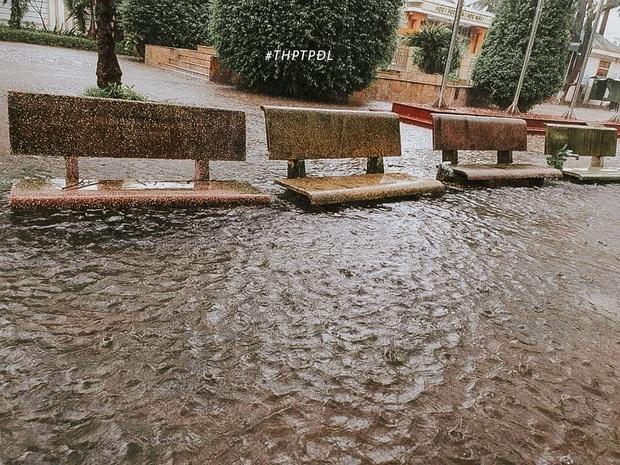Mưa lớn nhiều ngày biến trường học Nghệ An thành bể bơi, có chỗ ngập sâu cả mét - Ảnh 5.