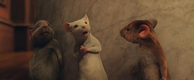 Phù Thủy, Phù Thủy: Anne Hathaway hóa yêu quái dọa con nít cười bể bụng, mùa Halloween mà bỏ qua là phí của trời nha! - Ảnh 4.