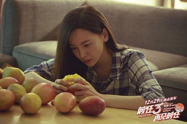9 sao Hoa ngữ hi sinh ăn cả thế giới vì cảnh phim chất lượng: Triệu Lệ Dĩnh tăng 4 kg, Dương Tử nhập viện 3 tháng - Ảnh 3.