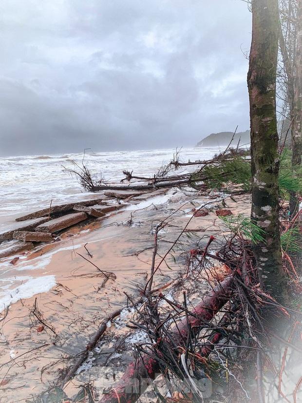 Bão tan lũ rút, bờ biển Thừa Thiên Huế tan hoang chưa từng thấy - Ảnh 18.