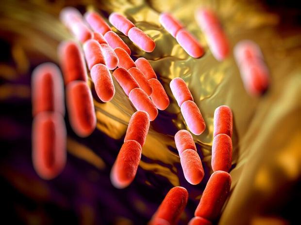 Ăn mực để trong tủ lạnh 1 tuần, cậu bé 11 tuổi có thể phải chạy thận suốt đời do vi khuẩn gây suy thận cấp - Ảnh 4.