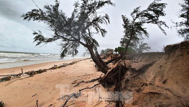 Bão tan lũ rút, bờ biển Thừa Thiên Huế tan hoang chưa từng thấy - Ảnh 27.
