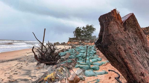 Bão tan lũ rút, bờ biển Thừa Thiên Huế tan hoang chưa từng thấy - Ảnh 31.
