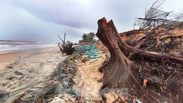 Bão tan lũ rút, bờ biển Thừa Thiên Huế tan hoang chưa từng thấy - Ảnh 6.
