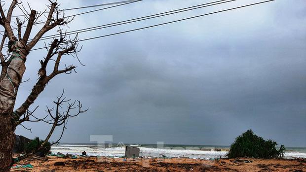 Bão tan lũ rút, bờ biển Thừa Thiên Huế tan hoang chưa từng thấy - Ảnh 8.