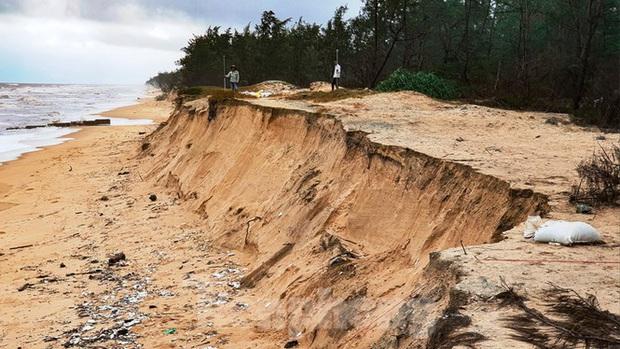 Bão tan lũ rút, bờ biển Thừa Thiên Huế tan hoang chưa từng thấy - Ảnh 12.