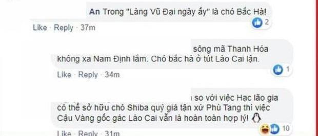 Fan Việt gọi tên ứng cử viên sáng giá vào vai Cậu Vàng: Một trong tứ đại quốc khuyển cách làng Vũ Đại chưa tới 60km? - Ảnh 3.