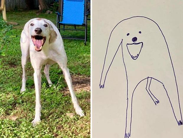 Bức tranh cún ngáo bất ngờ đánh bại mọi đối thủ nặng kí, giật giải quán quân trong cuộc thi vẽ chó - Ảnh 1.