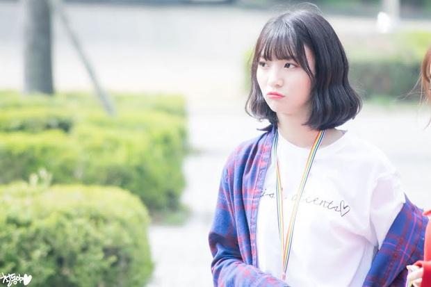 Nam giới Nhật chọn ra 10 nữ idol Kpop đẹp nhất: Hoa hậu Jisoo (BLACKPINK) thua nữ thần nhà SM, nhóm nào gần thầu cả BXH? - Ảnh 15.