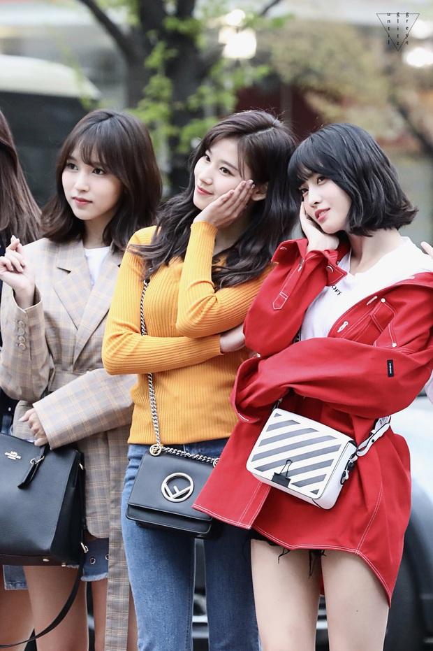 Tranh cãi khả năng Mina, Momo và Sana (TWICE) lập nhóm nhỏ: Kiểu gì cũng nổi đình đám nhưng rồi ai hát? - Ảnh 7.