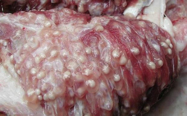 3 loại thịt chứa độc tố, ký sinh trùng được khuyến cáo ăn ít hoặc tốt nhất không ăn để tránh gây hại cho sức khỏe - Ảnh 3.