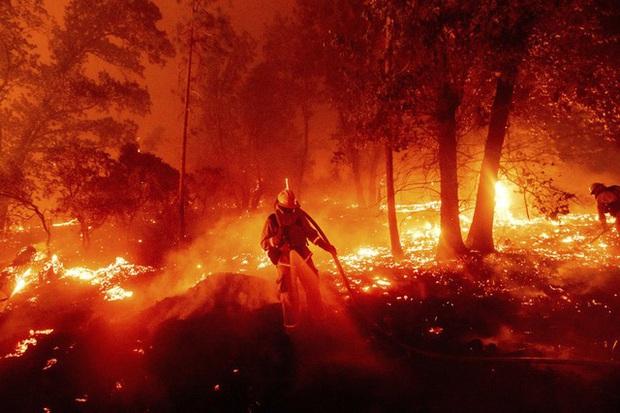 Cháy rừng thiêu rụi diện tích lớn ở California - Ảnh 2.