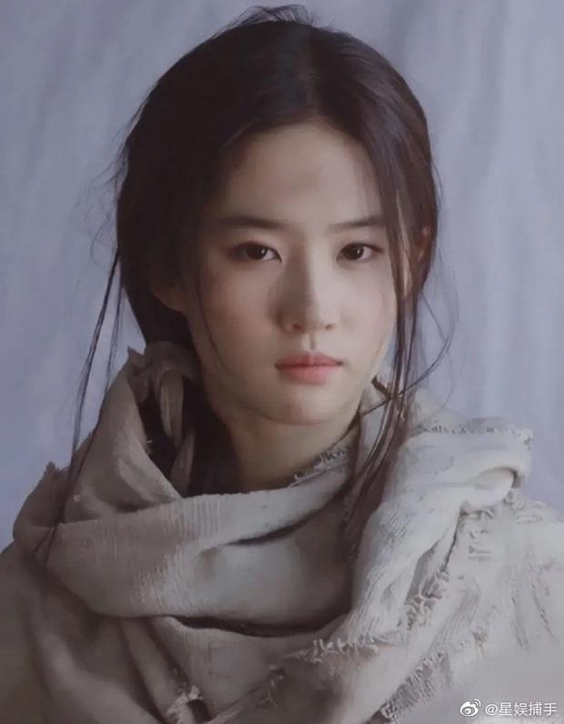 Đẹp mặc bao tải cũng đẹp: Ảnh cũ của Phạm Băng Băng - Lưu Diệc Phi gây bão, visual đỉnh cao bất chấp quần áo tơi tả - Ảnh 4.