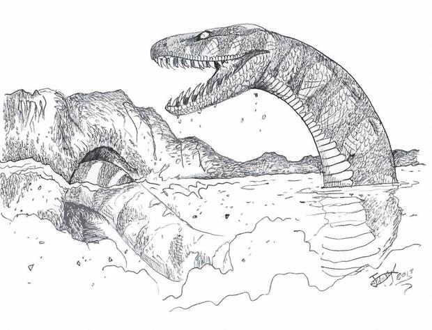 Vì sao 1/3 nhân loại lại sợ rắn và sự thật về những loài bò sát khổng lồ từng xơi tái cá voi và khủng long thời tiền sử - Ảnh 5.