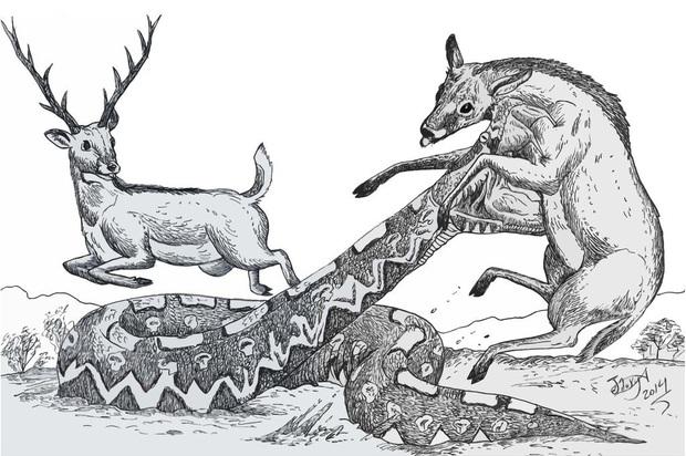 Vì sao 1/3 nhân loại lại sợ rắn và sự thật về những loài bò sát khổng lồ từng xơi tái cá voi và khủng long thời tiền sử - Ảnh 10.