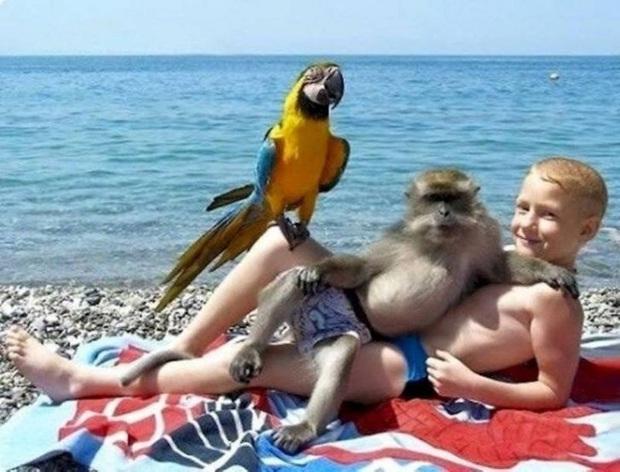 Những bức ảnh check-in du lịch hài hước đủ cung cấp ý tưởng cho hội chế ảnh có thể thỏa sức sáng tạo - Ảnh 17.