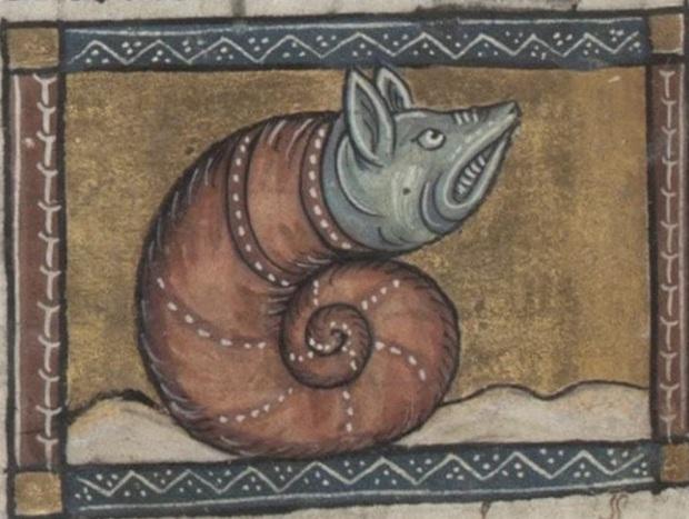 Khi họa sĩ thời Trung Cổ trổ tài vẽ lại động vật qua lời kể, con nào cũng sai trái hết hồn luôn - Ảnh 4.
