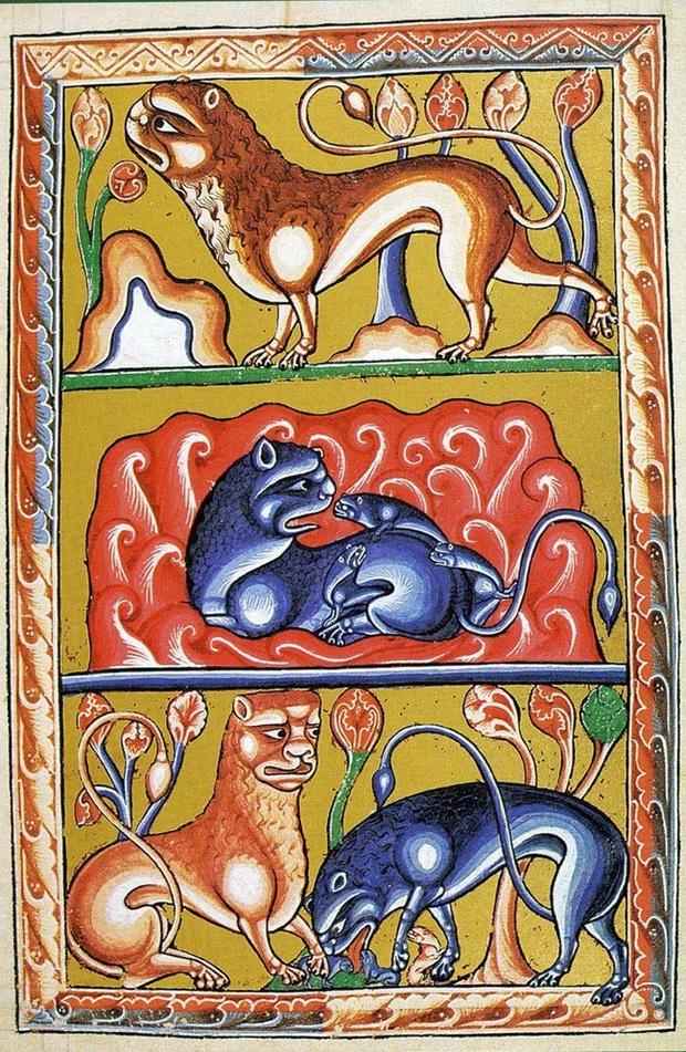Khi họa sĩ thời Trung Cổ trổ tài vẽ lại động vật qua lời kể, con nào cũng sai trái hết hồn luôn - Ảnh 17.