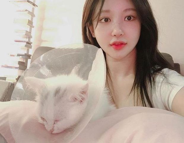 Nữ streamer Hàn Quốc tự tử vì áp lực dư luận, may mắn được cứu sống kịp thời - Ảnh 2.
