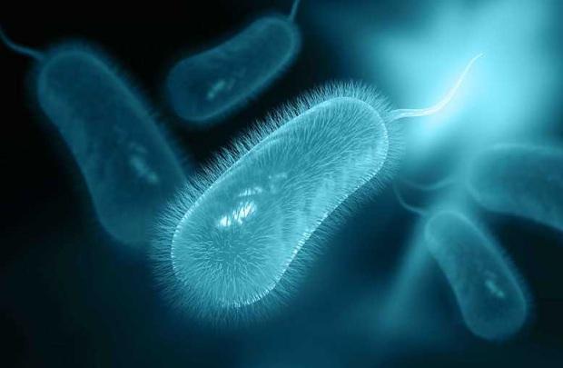 3 loại virus rất nguy hiểm dễ lây truyền khi hôn nhau, các cặp đôi nên đặc biệt đề phòng - Ảnh 3.