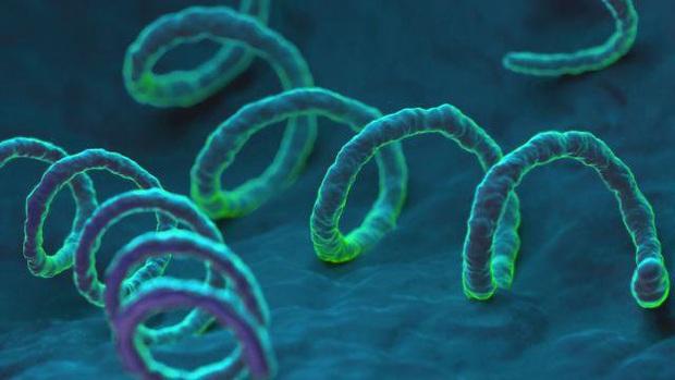 3 loại virus rất nguy hiểm dễ lây truyền khi hôn nhau, các cặp đôi nên đặc biệt đề phòng - Ảnh 4.