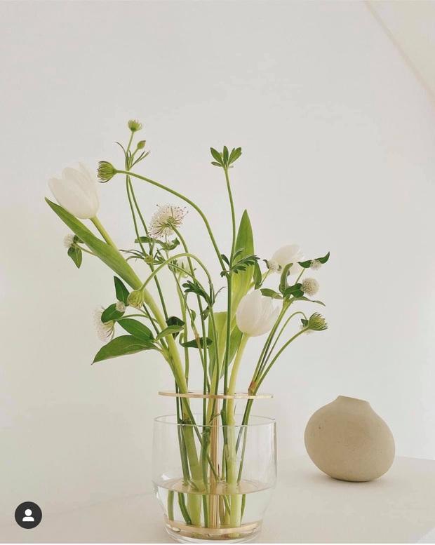Căn nhà màu trắng của nhà thiết kế Lâm Gia Khang: Cứ nghĩ đơn điệu nhưng trông sang quá - Ảnh 16.