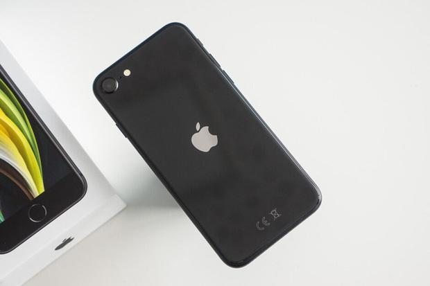 iPhone 11 và iPhone SE là smartphone bán chạy nhất toàn cầu, Samsung và Xiaomi thống trị top 10 - Ảnh 3.