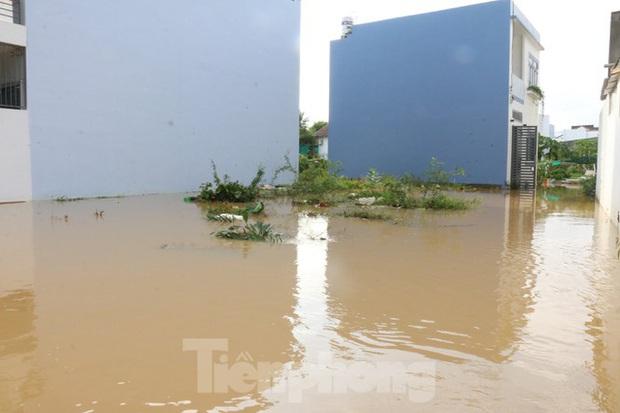 Bão tan nhưng dân phố biển Nha Trang vẫn bì bõm nơi nước ngập - Ảnh 4.