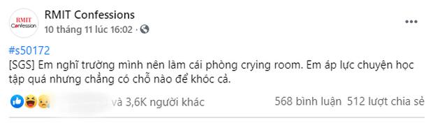 Học hành quá áp lực, sinh viên RMIT nháo nhào đòi xây crying room để khóc cho đỡ ngại - Ảnh 1.