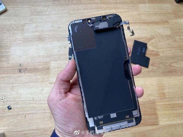 Mổ bụng iPhone 12 Pro Max, lộ thiết kế ngược đời và viên pin gây thất vọng - Ảnh 4.