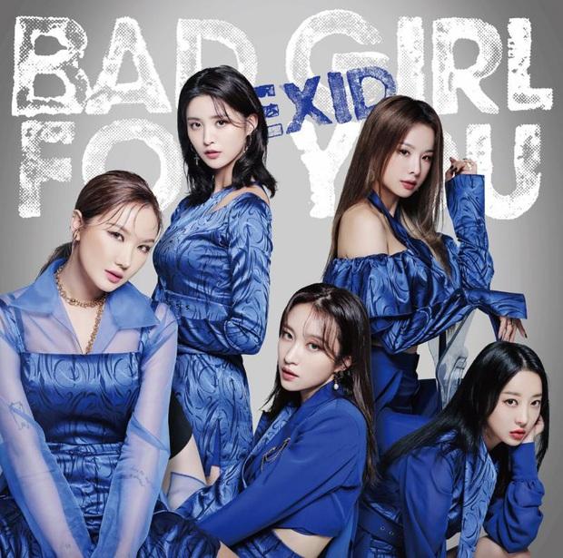 Dân tình ngỡ ngàng vì nữ idol nhóm nhạc nữ đình đám EXID phải đi làm phục vụ nhà hàng, trồng rau - Ảnh 7.