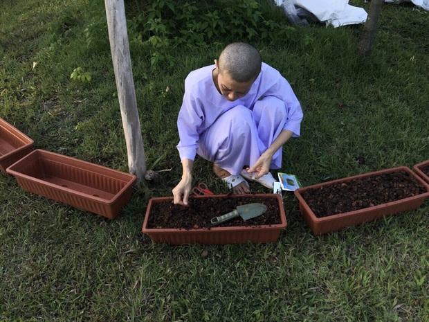 Trong khi Hoàng quý phi được phục vị, hình ảnh vợ cũ của Vua Thái Lan gầy gò hốc hác, đang trồng rau trong chùa được chia sẻ gây xôn xao MXH - Ảnh 5.