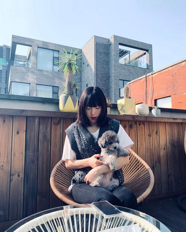 Muốn trông trẻ măng sành điệu, các nàng hãy học style của chị đại Taeyeon ngay đi! - Ảnh 4.