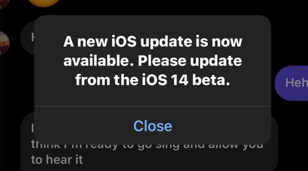 Người dùng khó chịu vì iOS 14 beta tiếp tục xuất hiện lỗi thông báo cập nhật giả - Ảnh 1.