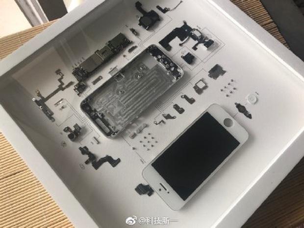 Rộ trào lưu mổ xẻ iPhone cũ làm tiêu bản ở Trung Quốc - Ảnh 1.