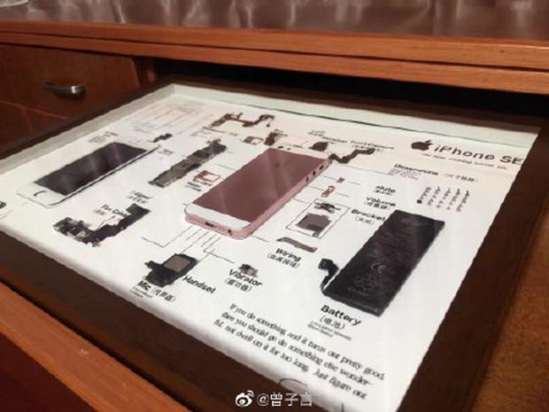 Rộ trào lưu mổ xẻ iPhone cũ làm tiêu bản ở Trung Quốc - Ảnh 4.