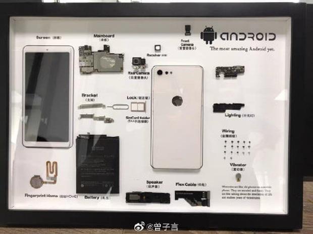 Rộ trào lưu mổ xẻ iPhone cũ làm tiêu bản ở Trung Quốc - Ảnh 7.