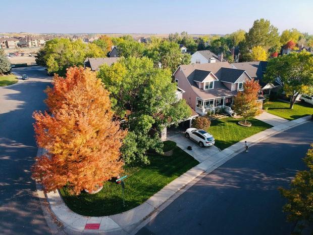 Vợ chồng trẻ liều mua trả góp 30 năm, có được căn nhà vườn 560m2 đầy ưng ý, bí quyết cực kỳ đơn giản - Ảnh 4.