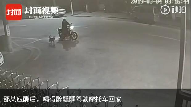 Góc ngáo ngơ: Người đàn ông dừng xe cãi nhau với chó suốt nửa tiếng, lúc đuối lý bèn bày trò phá hoại để dọa nó - Ảnh 2.
